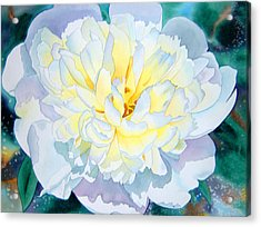 White Peony Acrylic Print by Teresa Boston