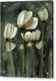 White Poppies Acrylic Print by Ben Potter
