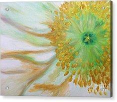 White Poppy Acrylic Print by Sheron Petrie
