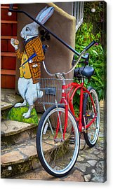 White Rabbit And Bike Acrylic Print by Garry Gay