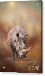 White Rhinoceros In Summer Sun Acrylic Print