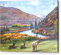 White River Acrylic Print by Darla Joy  Johnson