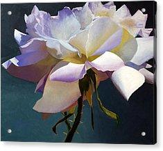 White Rose Of Eden Acrylic Print