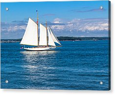 White Sails Acrylic Print by Laurie Breton
