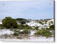 White Sand Dunes Acrylic Print by Tina B Hamilton