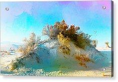 White Sand Dunes Vegetation Acrylic Print