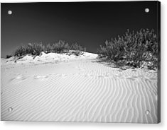 White Sands 5 Acrylic Print
