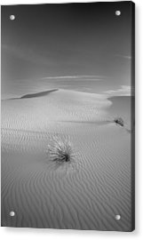 White Sands Acrylic Print by Peter Tellone