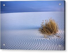 White Sands Scrub Acrylic Print by Peter Tellone