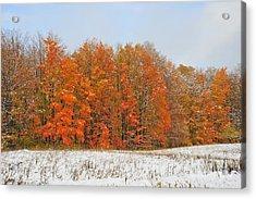 White Snow In Autumn Acrylic Print