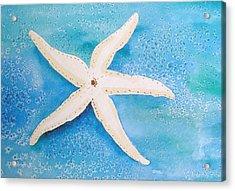 White Starfish Acrylic Print by Patricia Piffath