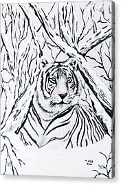 White Tiger Blending In Acrylic Print