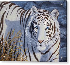 White Tiger - Crystal Eyes Acrylic Print by Crista Forest