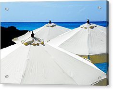 White Umbrellas Acrylic Print by Karen Wiles