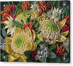 White Waratahs Flannel Flowers And Kangaroo Paws Acrylic Print