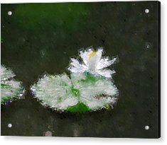 White Water Lily And Leaf Acrylic Print