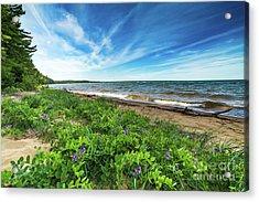Whitefish Bay Roxbury Creek -2085 Acrylic Print