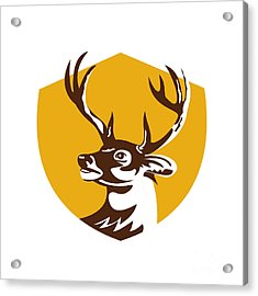 Whitetail Deer Buck Head Crest Retro Acrylic Print by Aloysius Patrimonio