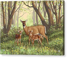 Whitetail Doe And Fawns - Mom's Little Spring Blossoms Acrylic Print