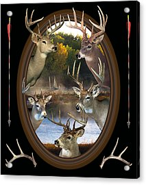 Whitetail Dreams Acrylic Print