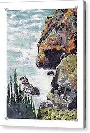 Whitewater Coast Acrylic Print