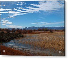 Acrylic Print featuring the photograph Whitewater Draw by James Peterson