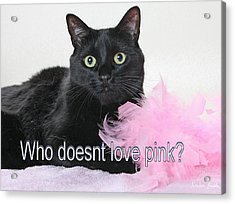 Who Doesnt Love Pink  Acrylic Print