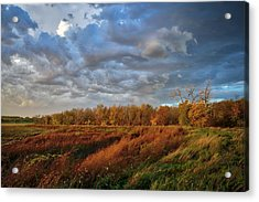 Who Has Seen The Wind? Acrylic Print