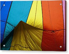 Who Landed This Balloon On Me Acrylic Print by Mike  Dawson