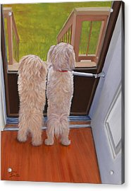 Who's There Acrylic Print by Danielle Smith