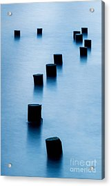 Why Acrylic Print by Az Jackson