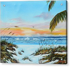 Why Not Siesta Key Acrylic Print by Lloyd Dobson