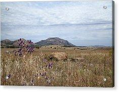 Wichita Landscape Acrylic Print