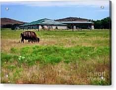 Wichita Mountain Wildlife Reserve Welcome Center I Acrylic Print by Tamyra Ayles