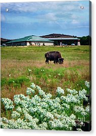 Wichita Mountain Wildlife Reserve Welcome Center Verticle Acrylic Print by Tamyra Ayles