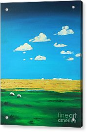 Wide Open Spaces And A Big Blue Sky Acrylic Print
