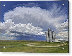 Wide Open Spaces Acrylic Print