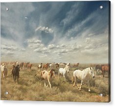 Wide Range Acrylic Print
