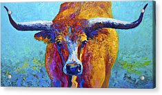 Widespread - Texas Longhorn Acrylic Print by Marion Rose