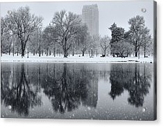 Snowy Reflections Of Trees In Lake At City Park, Denver Co  Acrylic Print