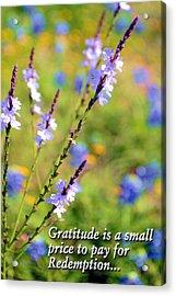Wild About Gratitude 1 Acrylic Print