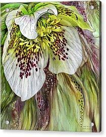 Wild Bloom Acrylic Print