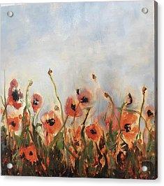 Wild Corn Poppies Underpainting Acrylic Print