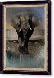 Wild Elephant Montage Acrylic Print