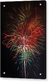 Wild Fireworks Acrylic Print by Garry Gay