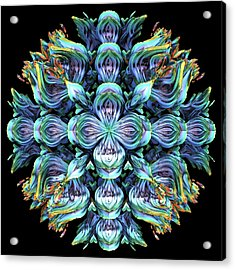 Acrylic Print featuring the digital art Wild Flower by Lyle Hatch