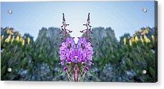 Wild Flower Reflection Acrylic Print by Pelo Blanco Photo
