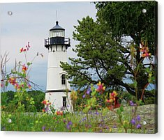 Wild Flowers On Rock Island Acrylic Print
