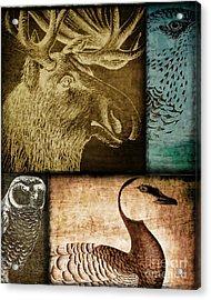 Wild Game Primitive Patchwork Acrylic Print