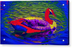 Wild Goose Acrylic Print by Russ Mullen